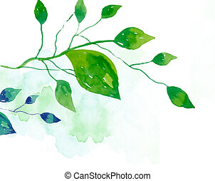 leaves - watercolor drawing of green leaves in a white...