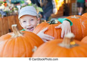 pumpkin patch - smiling little boy having fun at pumpkin...