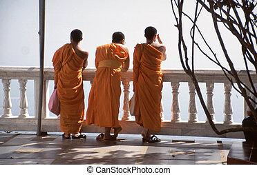 budista, monjes, naranja