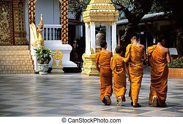 naranja, budista, monjes