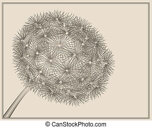 Blowball woodcut - dandelion in vector woodcut style
