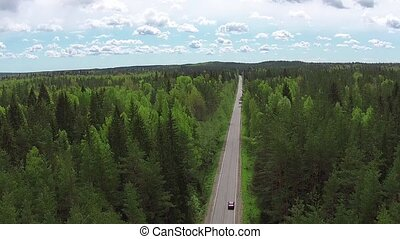 Flying Above Road in Summer Forest