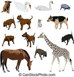Animals - Set of animal vector illustratins. Horse, dog,...