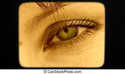 Beautiful Green Eye Of Dark Haired Woman Looking Into Camera