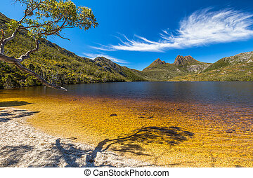 Cradle Mountain Lake Dove