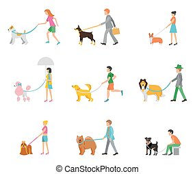 professional dog walking - People walk their dogs on a...