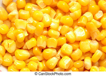 Sweet corn kernels arranged as background