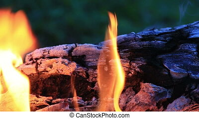Beautiful fire flames in nature. - Beautiful fire flames in...