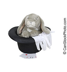 Rabbit in the hat - Magic tricks as shown by various...