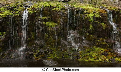 Moss and trickling water - Stone wall with green moss and...