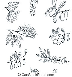 Berries sketch seamless pattern. Vector illustration -...