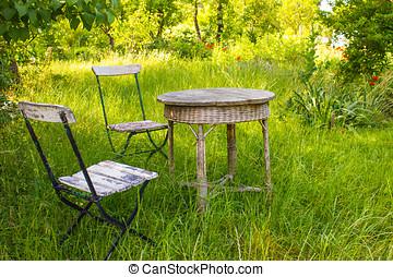 Garden - Old Fashioned Garden in Summer