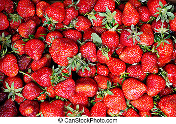 strawberry background - a lot of fresh strawberry useful as...