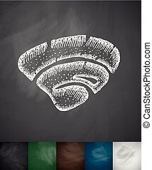 clam icon Hand drawn vector illustration Chalkboard Design
