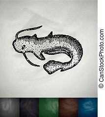 catfish icon. Hand drawn vector illustration. Chalkboard...