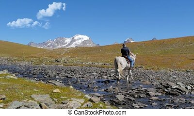 alpine landscape with horseman 4k - man riding a beautiful...