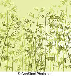 Bamboo Forest - Bamboo forest background.
