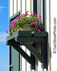 Flowers in Window Box - Window Decorated with Fresh Flowers...