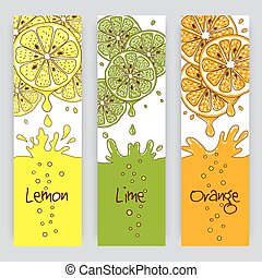 Citrus fruit banners - Vertical vector banners with citrus...