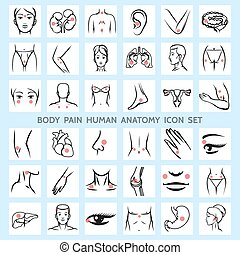 Body pain human anatomy icons. Medical eye brain trauma...