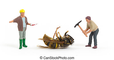 Dead wasp with miniature figurines
