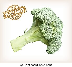 broccoli - Vector color image of an broccoli on a white...