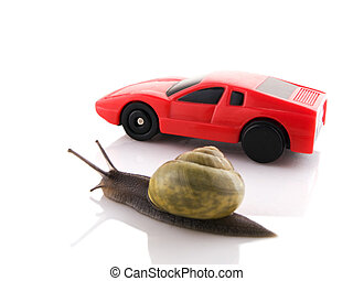 Snail versus car - Competition between a snail and a sports...
