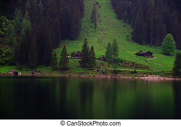 lake with alm - lake with reflection of green alm