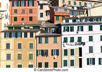 colorful houses in the village of Camogli