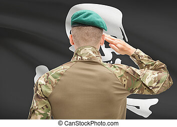 Soldier saluting to USA state flag conceptual series - Jolly...
