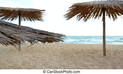 Sandy Beach With Thatched Umbrellas On A Windy Day -...