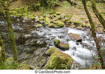 River among the stones - River flowing among the stones in...