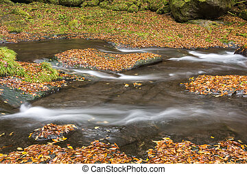 River flowing on bedrock - River flowing on the fallen...