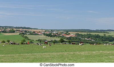 Typical french countryside landscape - Lorraine