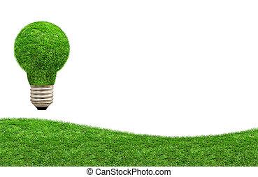 Green grass light bulb on a meadow.