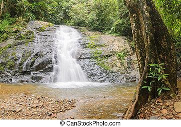 Beautiful little waterfall in rain forest.
