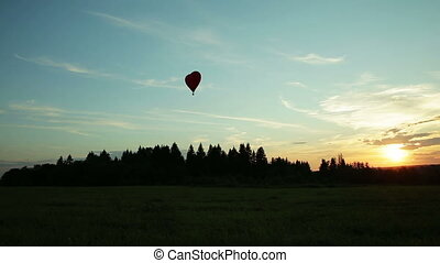 Hot air balloons flying over trees sunset