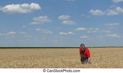 Farmer or agronomist in field - Farmer or agronomist inspect...