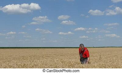 Farmer or agronomist in field - Farmer or agronomist inspect...