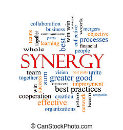 Synergy Word Cloud Concept
