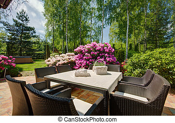 Patio furniture in beautiful garden - Stylish patio...