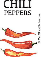 Red chili pepper isolated poster on white background....