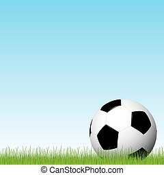 soccer ball lying in the grass with blue sky background
