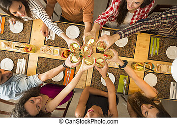 Friends having a toast - Group of people toasting and...