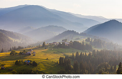 Misty morning in the Carpathians The Ukraine