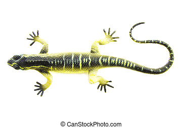 The green lizard - Toy lizard isolated on a white background