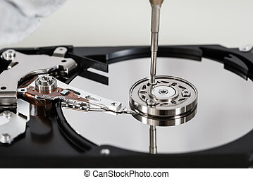 Harddisk With Screwdriver - Close-up Of Open Harddisk Repair...