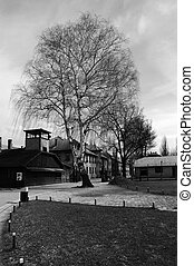 Nazi Germany\'s concentration and extermination camps -...
