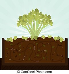Stalk of celery and compost - Stalk of celery. Composting...