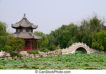 Lotus pond - The panorama of lotus pond, garden with...